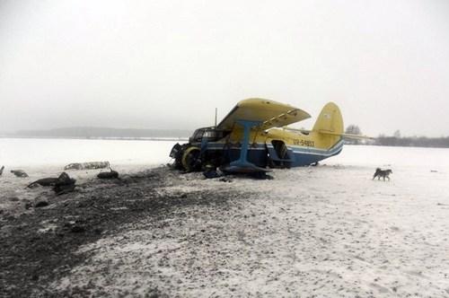 Под Житомиром разбился самолет
