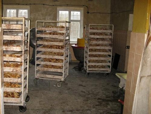 производство печенья в Житомире